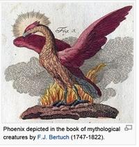 Phoenix-Bertuch-thumb